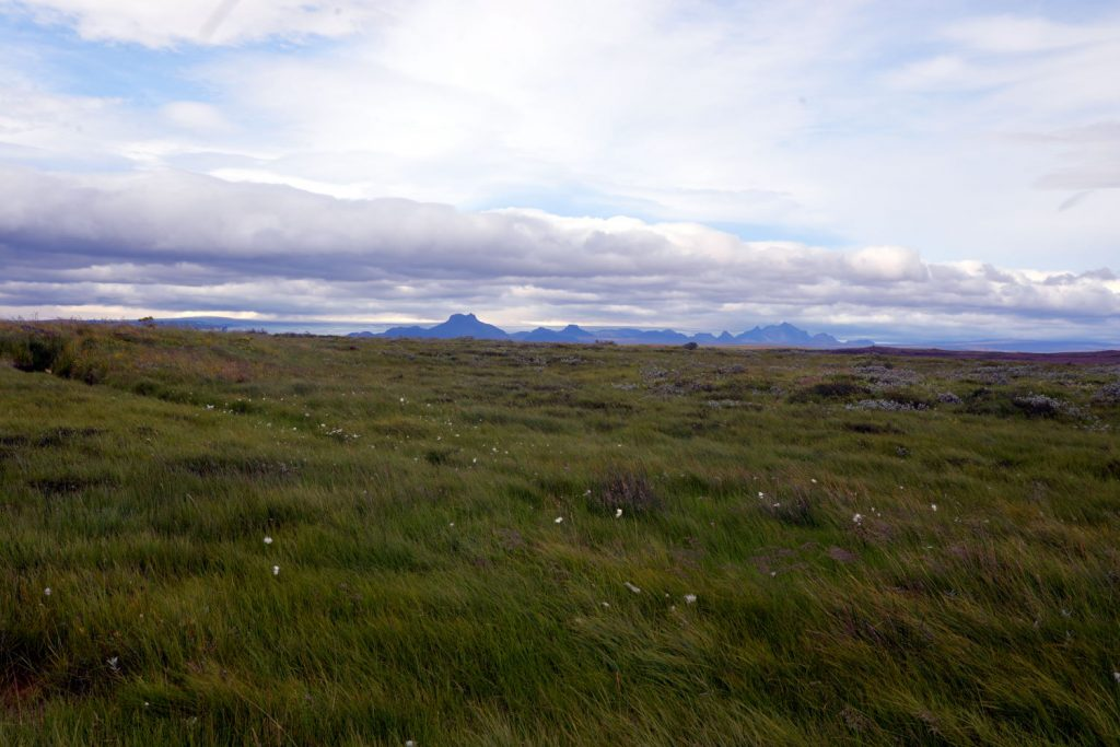 The scenic grass tundras surrounding Gullfoss are nearly as breathtaking as the falls themselves