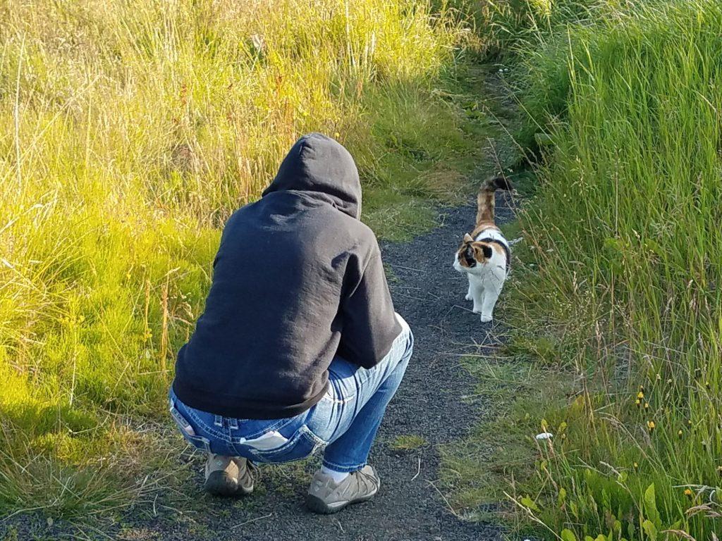 Deb made a feline friend in Stykkisholmur Iceland